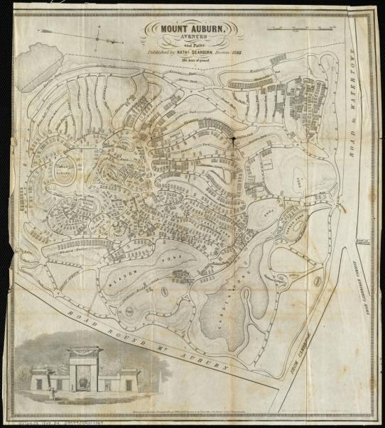 Mount Auburn Dearborn 1848