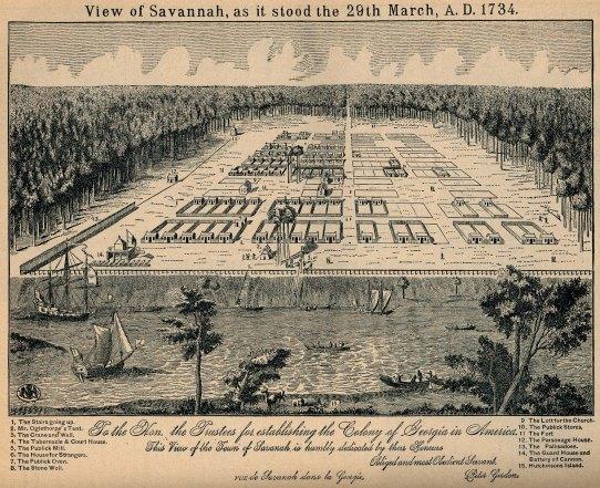 savannah_1734