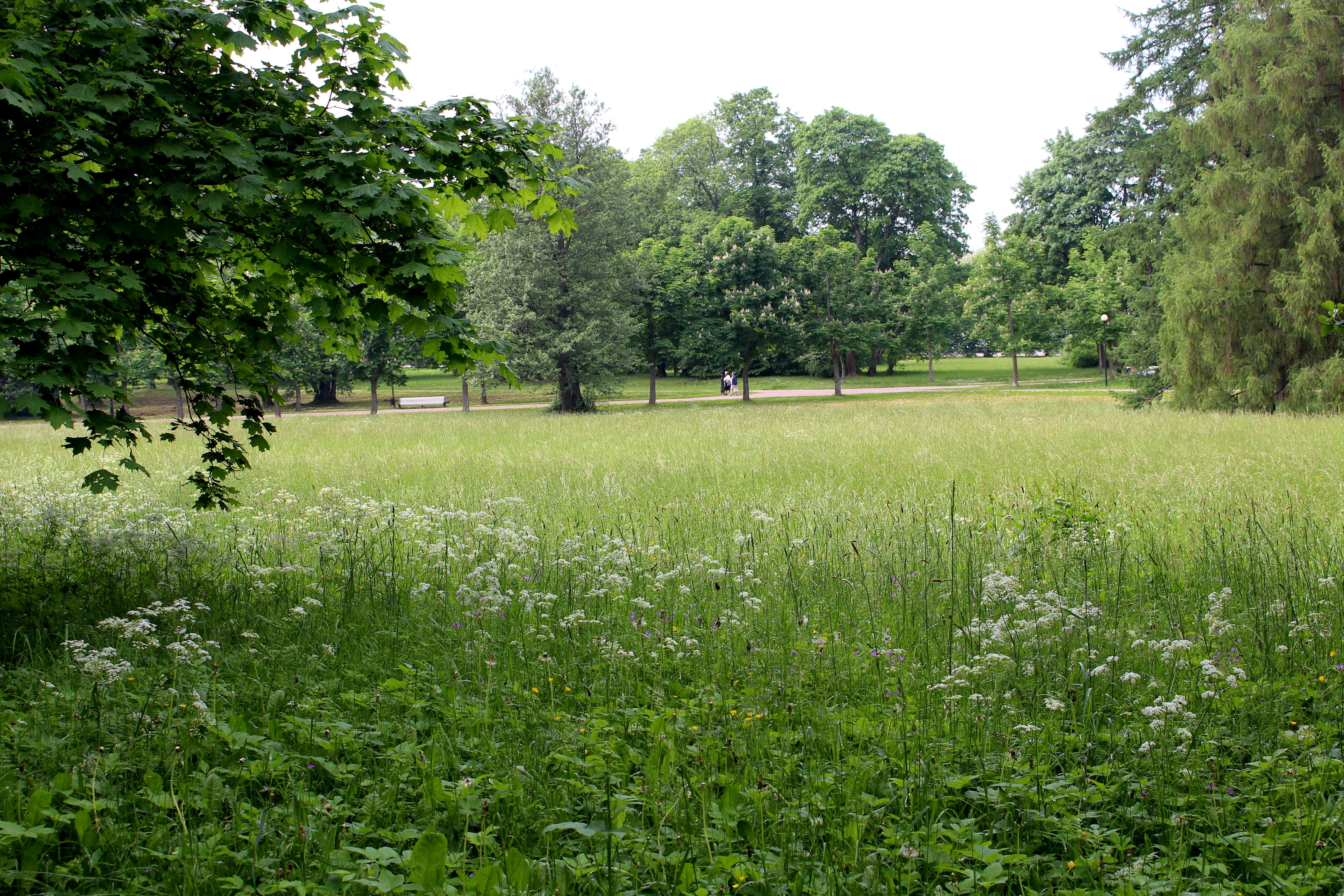 Kadriorg: The People's Park - Landscape NotesLandscape Notes